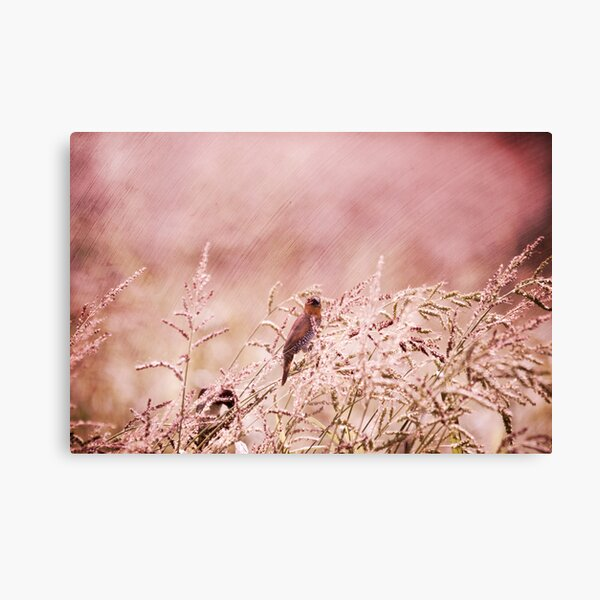 """""""Carefree Day"""" Canvas Print"""