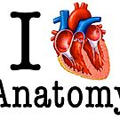 I love Anatomy  by CoolCarVideos