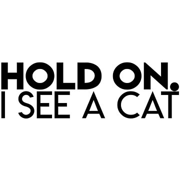 HOLD ON, I SEE A CAT by LiquidBass