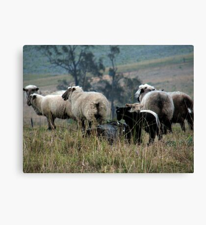 A Country Scene Canvas Print