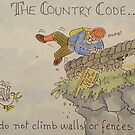 Country Code 3 by Martin Williamson (©cobbybrook)