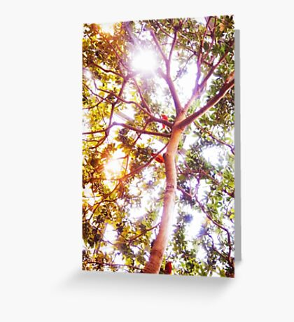 Grow and Glow Greeting Card