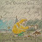 Country Code 4 by Martin Williamson (©cobbybrook)