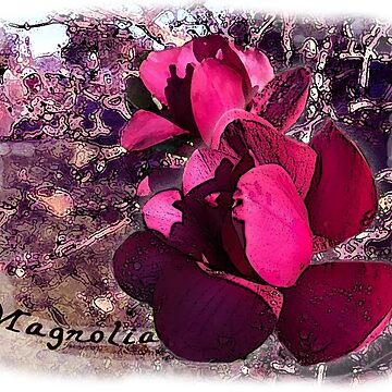 Magnolia Madness by jennyjeffries