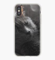 Kitteh Kitteh iPhone Case