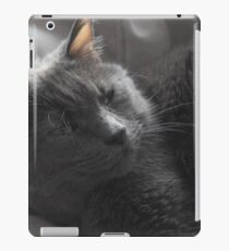 Kitteh Kitteh iPad Case/Skin