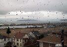 Rain droplets by Jaeda DeWalt
