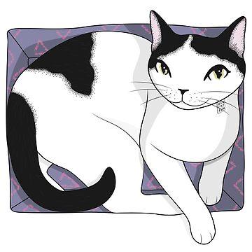 If It Fits, Cat Sits by runcatrun