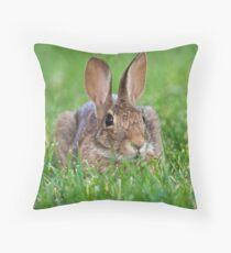 Brown Rabbit Throw Pillow