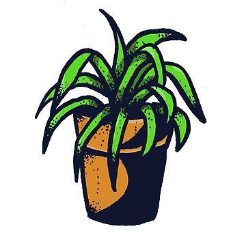 House Plant by ivyklomp