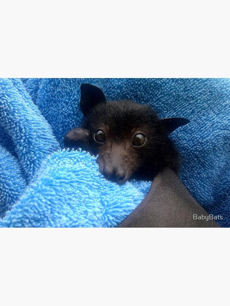 Baby Bat Cruz In Blue. by BabyBats