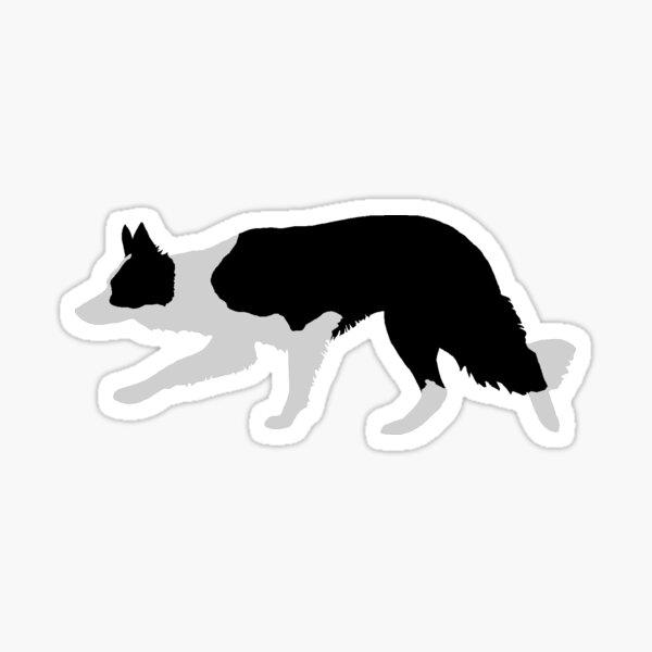 Border Collie (Black and White) Sticker