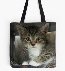 Babyboy Tote Bag