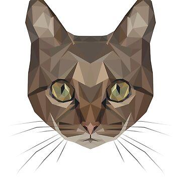 Cat by MagdaHanak