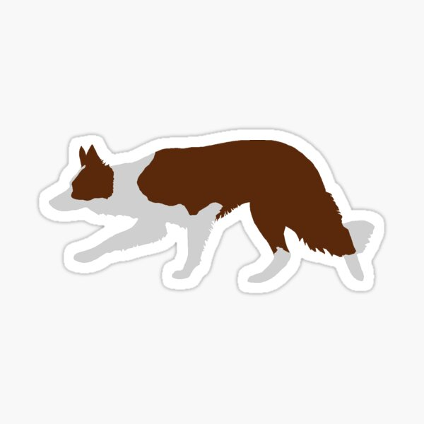Border Collie (Red and White) Sticker