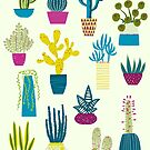 Cactus Garden by Nic Squirrell