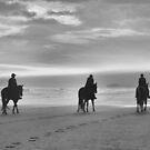 Three Amigos by Dawne Dunton