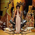 Drama Goddess by Sally McLean