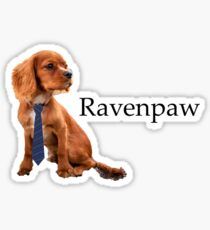 Ravenpaw - the most Clever Pupper Sticker