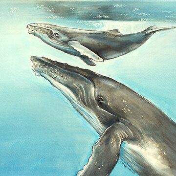 Humpback whale and calf by RedCloudDesign