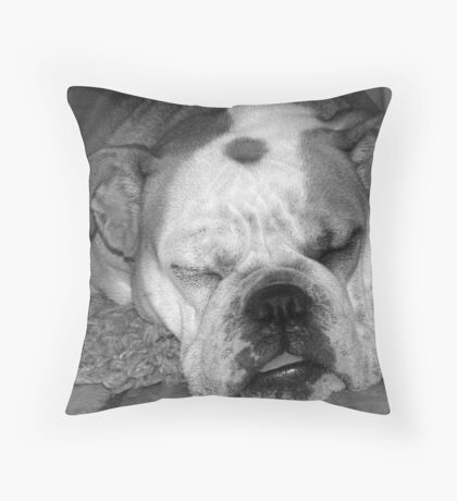 Wake me up when you are done... Throw Pillow