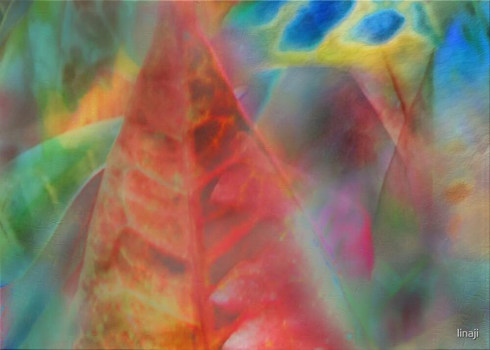 Transparancy ... A story of Love by linaji