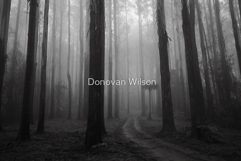 Great Dividing Range. by Donovan Wilson
