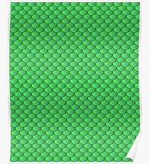 Scalemail Green Poster