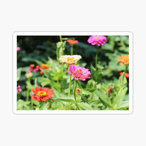 Colorful Flower Garden Sticker