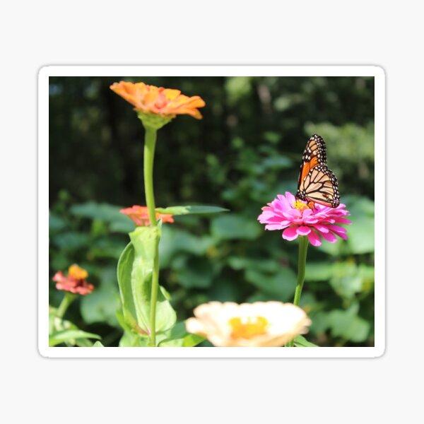 Butterfly, Flower Garden  Sticker
