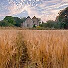 Wheatfields To The Church by Dave Godden