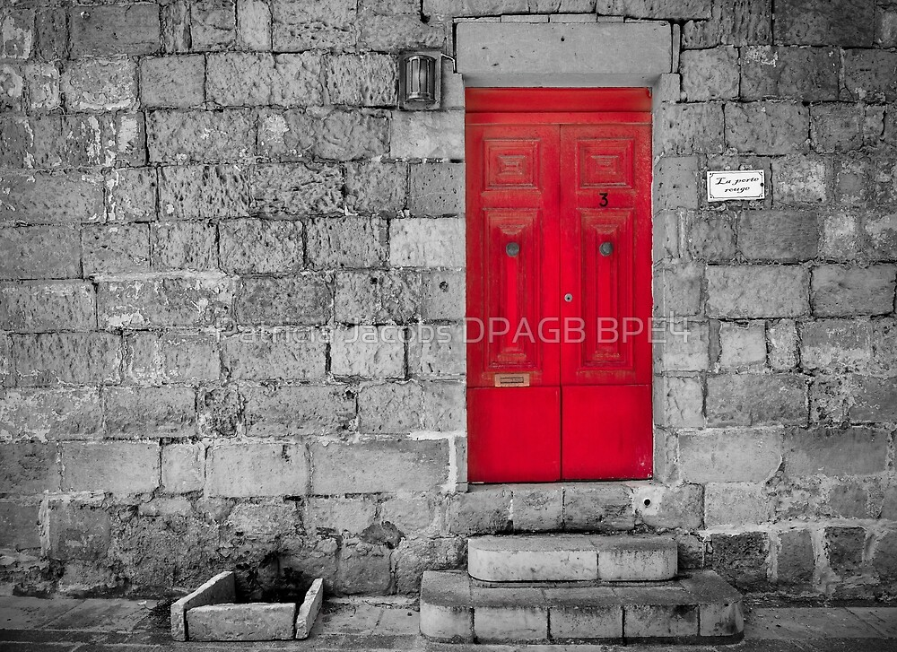 The Red Door by Patricia Jacobs DPAGB BPE4