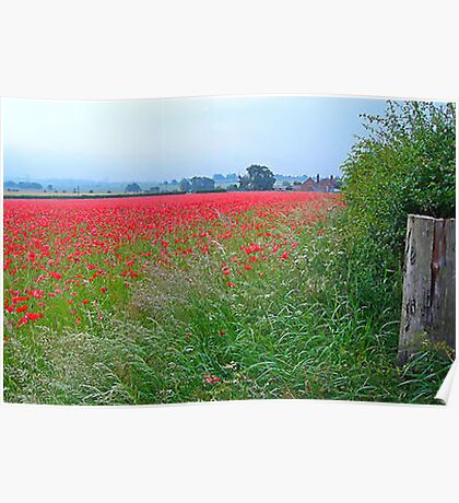 Field of Rememberance Poster