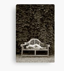 The Resting Bench Canvas Print