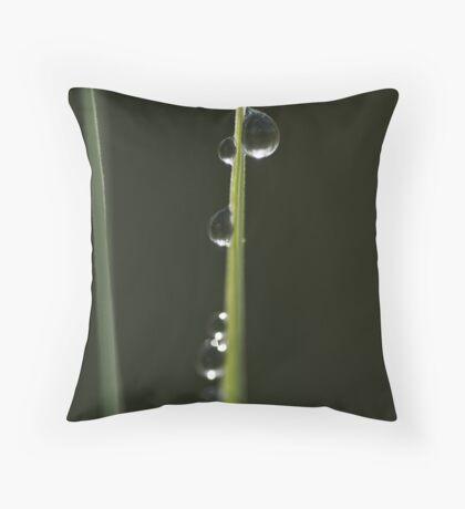 Vertical Drops Throw Pillow