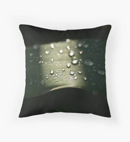 Horisontal Drops Throw Pillow