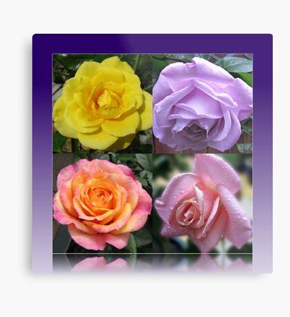 Collage mit vier Rosen Metallbild