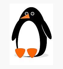 Penguin 1. Photographic Print