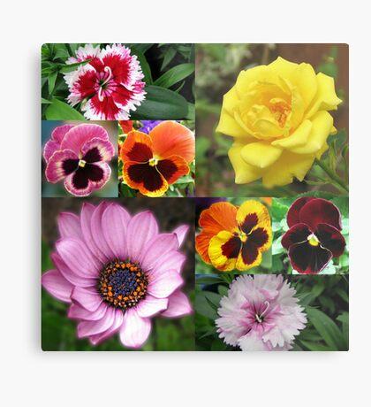 Sunkissed Summer Flowers Collage - ungerahmt Metallbild