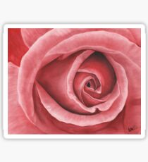 Close Up Rose - Dry Brush Oil Painting Sticker