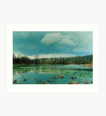 072306-26 Art Print