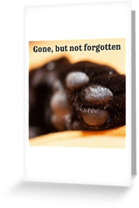 Gone but not forgotten (paw) by Kamira Gayle