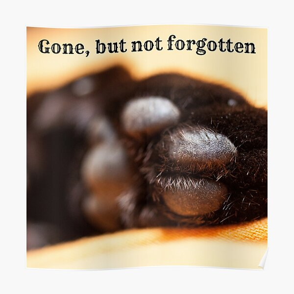 Gone but not forgotten (paw) Poster