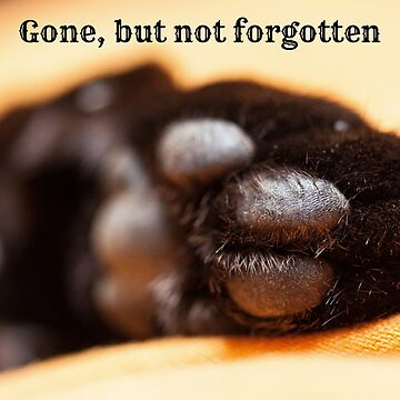 Gone but not forgotten (paw) by Impurrfectlife