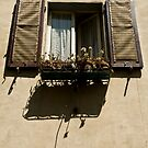 window with flowers by Ilva Beretta