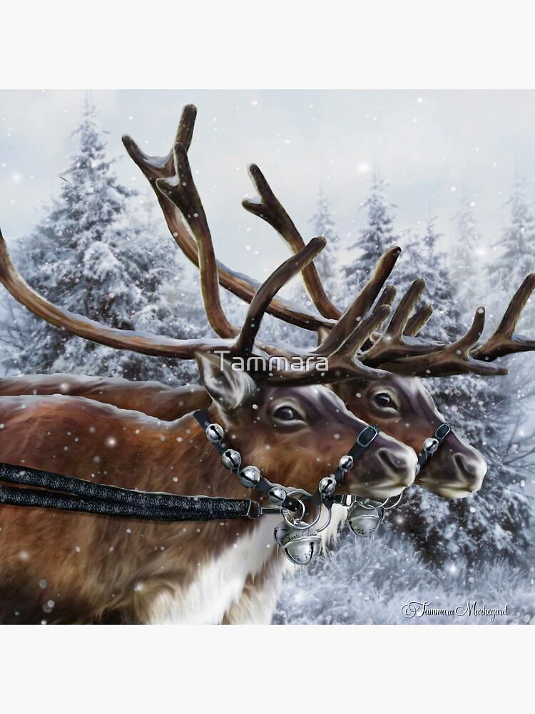 The Christmas Ride by Tammara