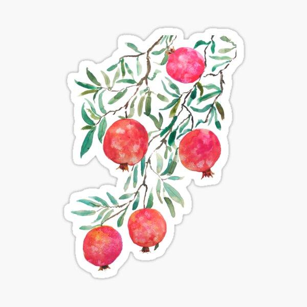 red orange pomegranate watercolor Sticker