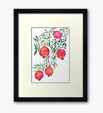 pomegranate watercolor Framed Print