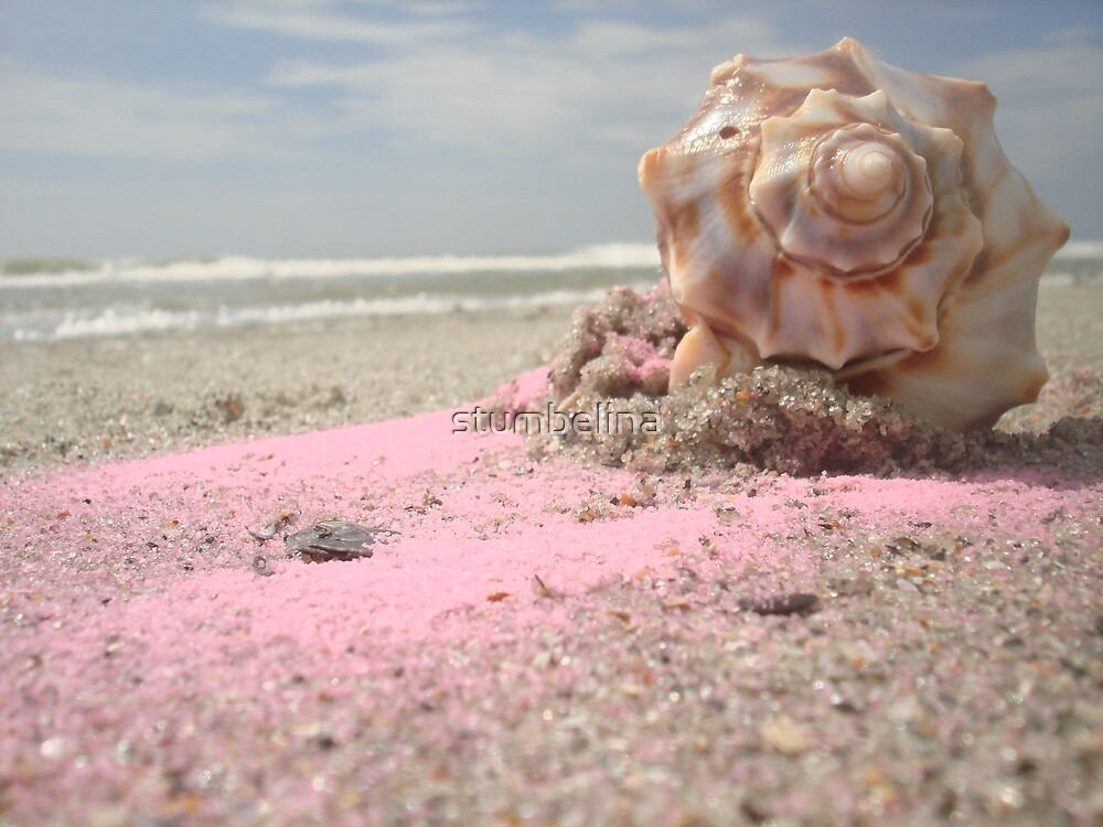 Pinky Shell by stumbelina