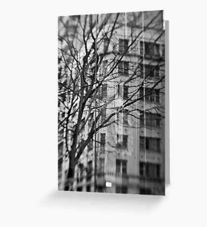 Wintry Reflection - Sydney - Australia Greeting Card